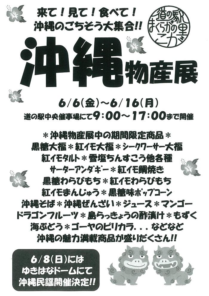 沖縄物産展.jpg