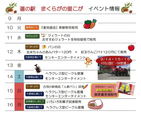 item_08.png